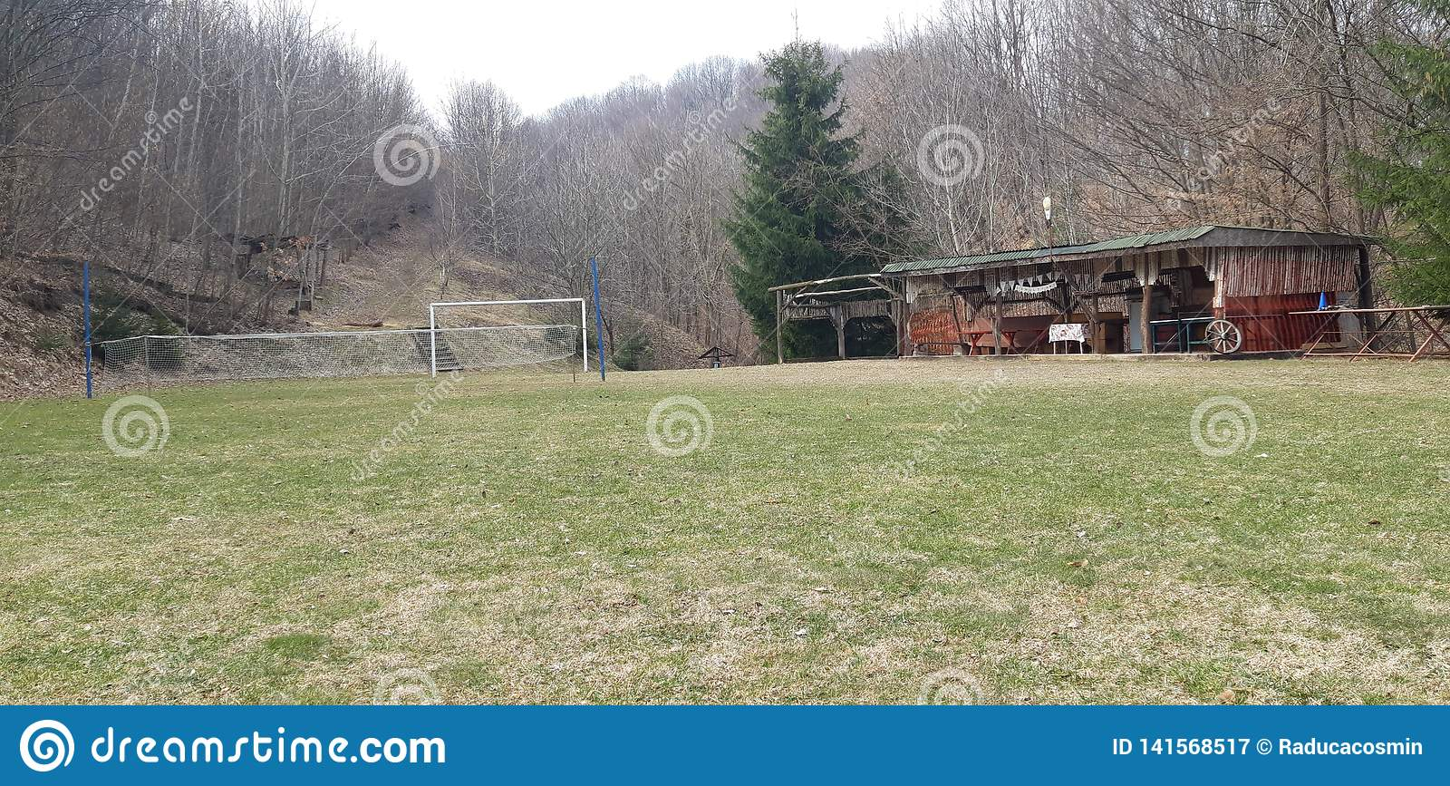 Zielony pole futbol i siatkówka