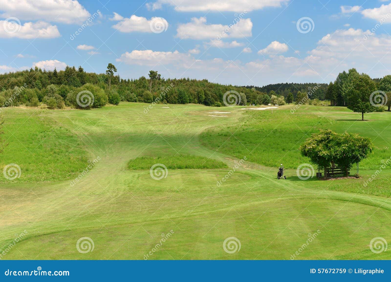 Zielony pole golfowe i błękitny chmurny niebo Odpowiada z drzewa landscap