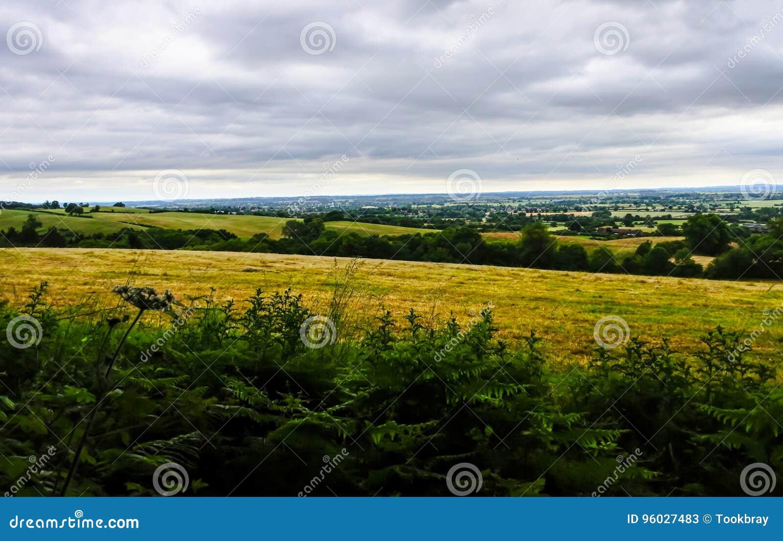 Zielony widok od odgórnego wzgórza