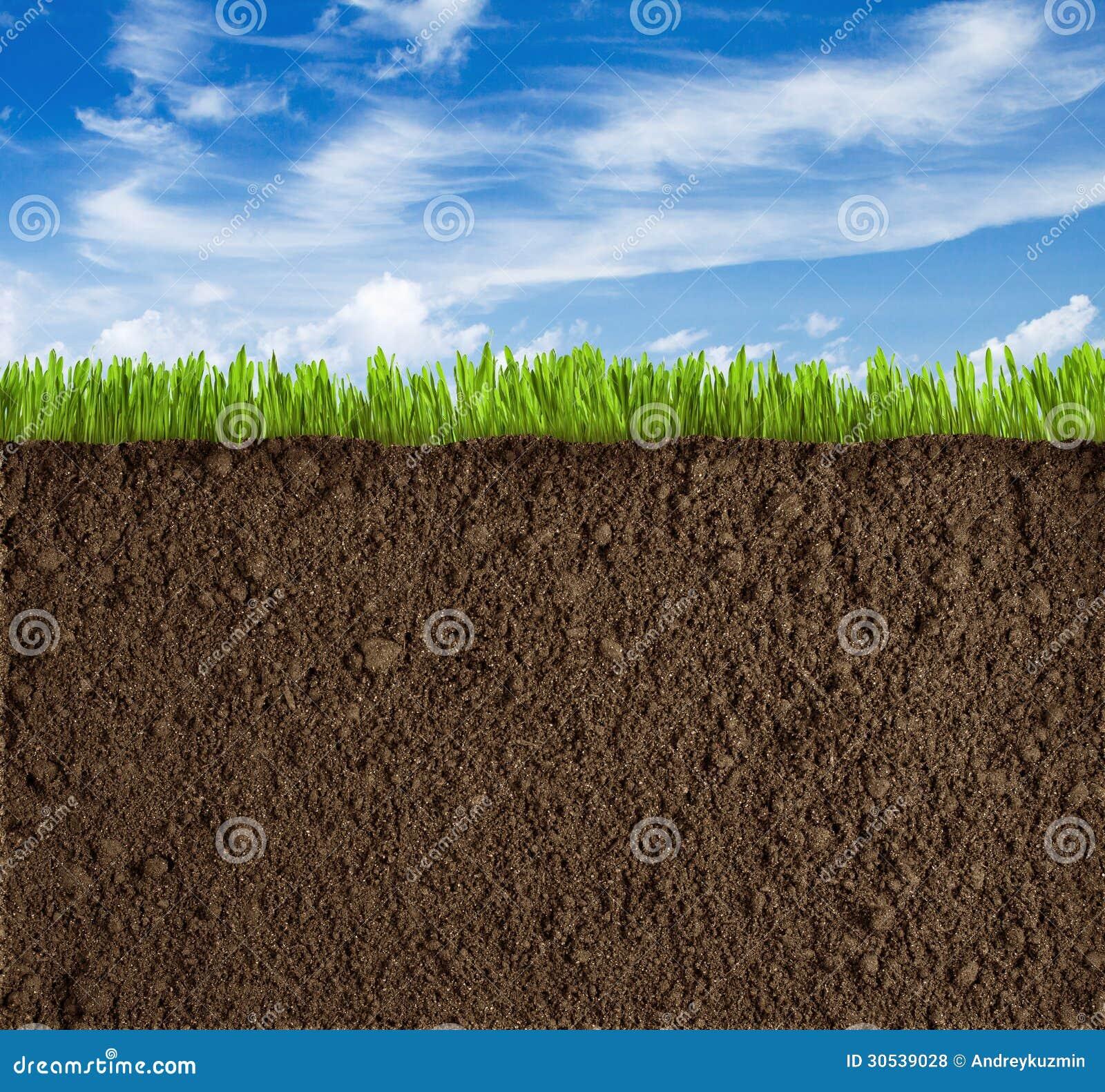 Ziemi, trawy i nieba tło,