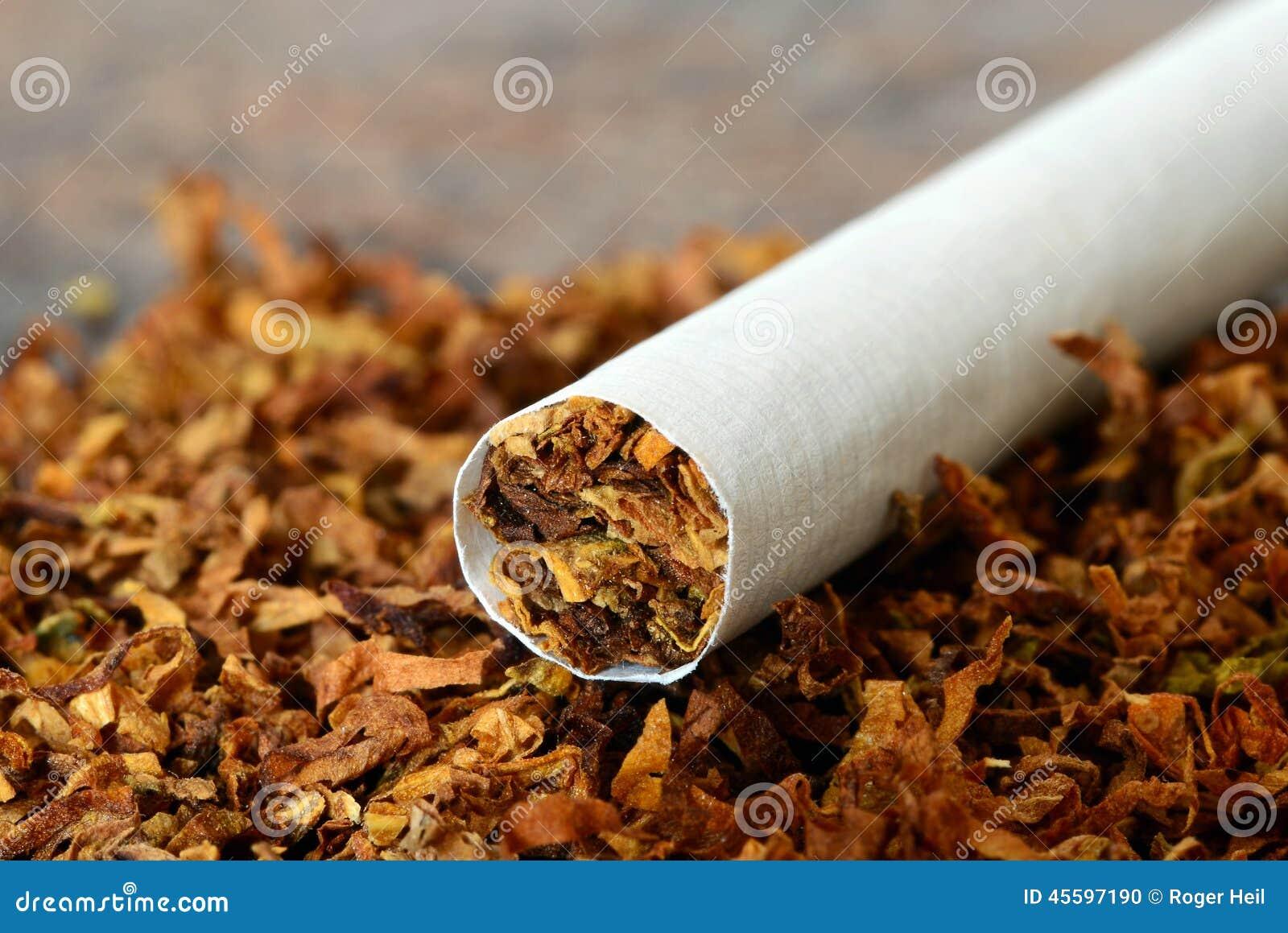 zigarette tabak stockfoto bild von hilfsmittel chemikalie 45597190. Black Bedroom Furniture Sets. Home Design Ideas