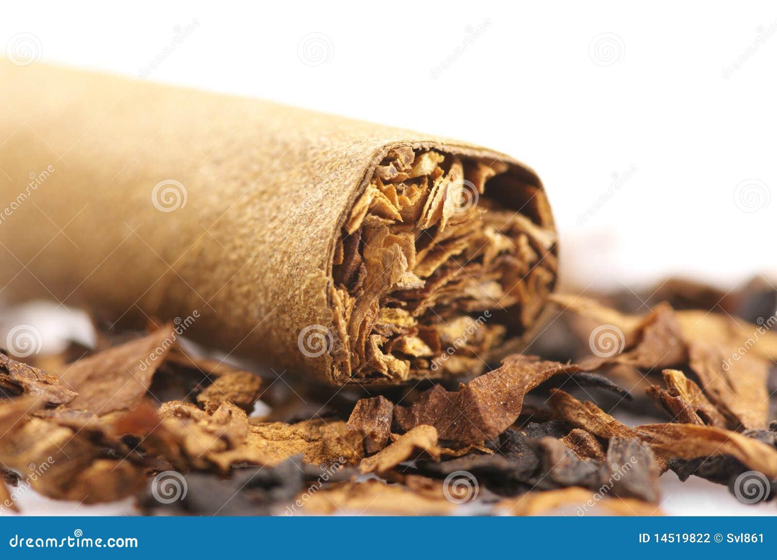 Zigarre und Tabak