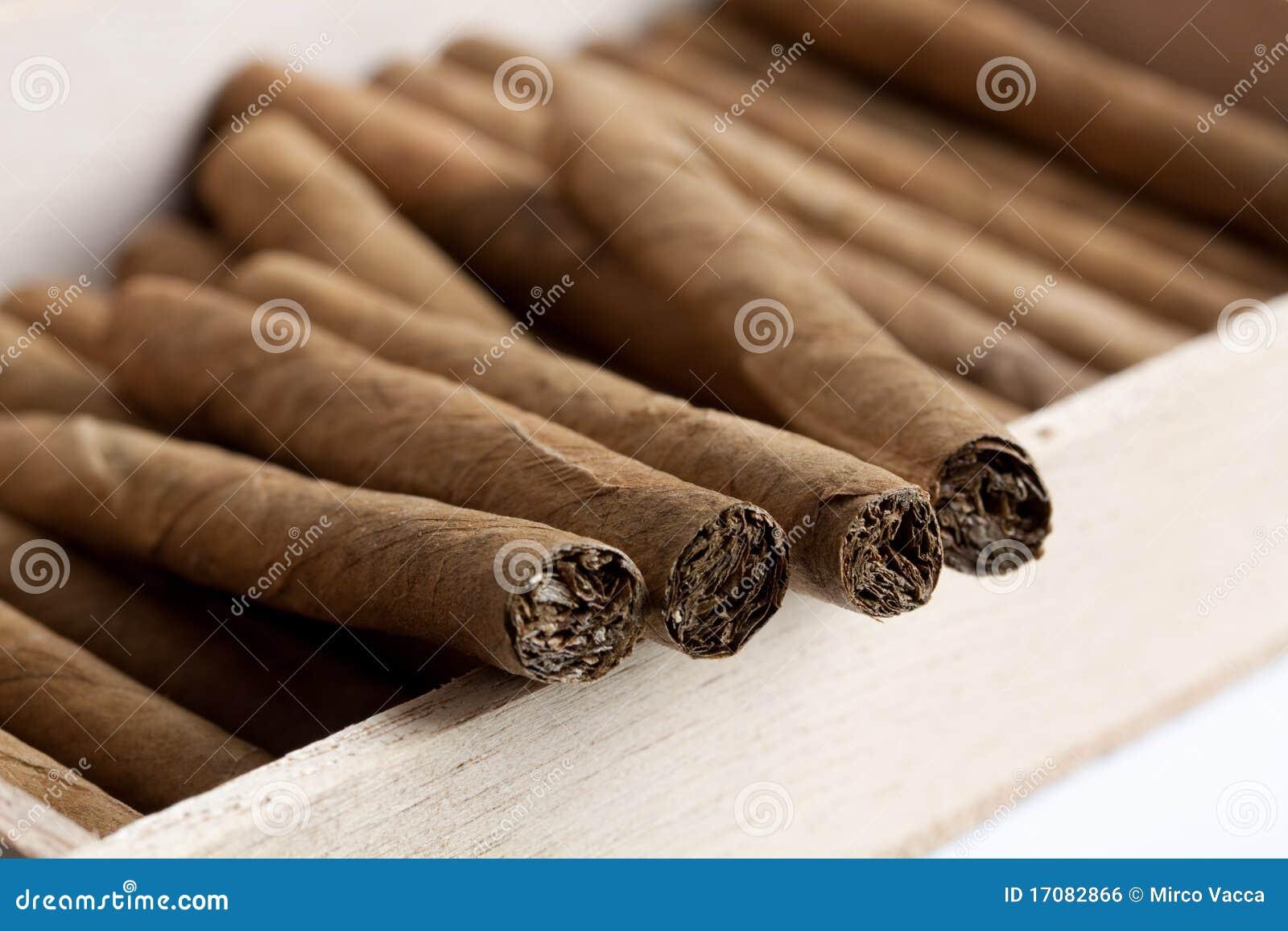 Zigarren in einem Kasten