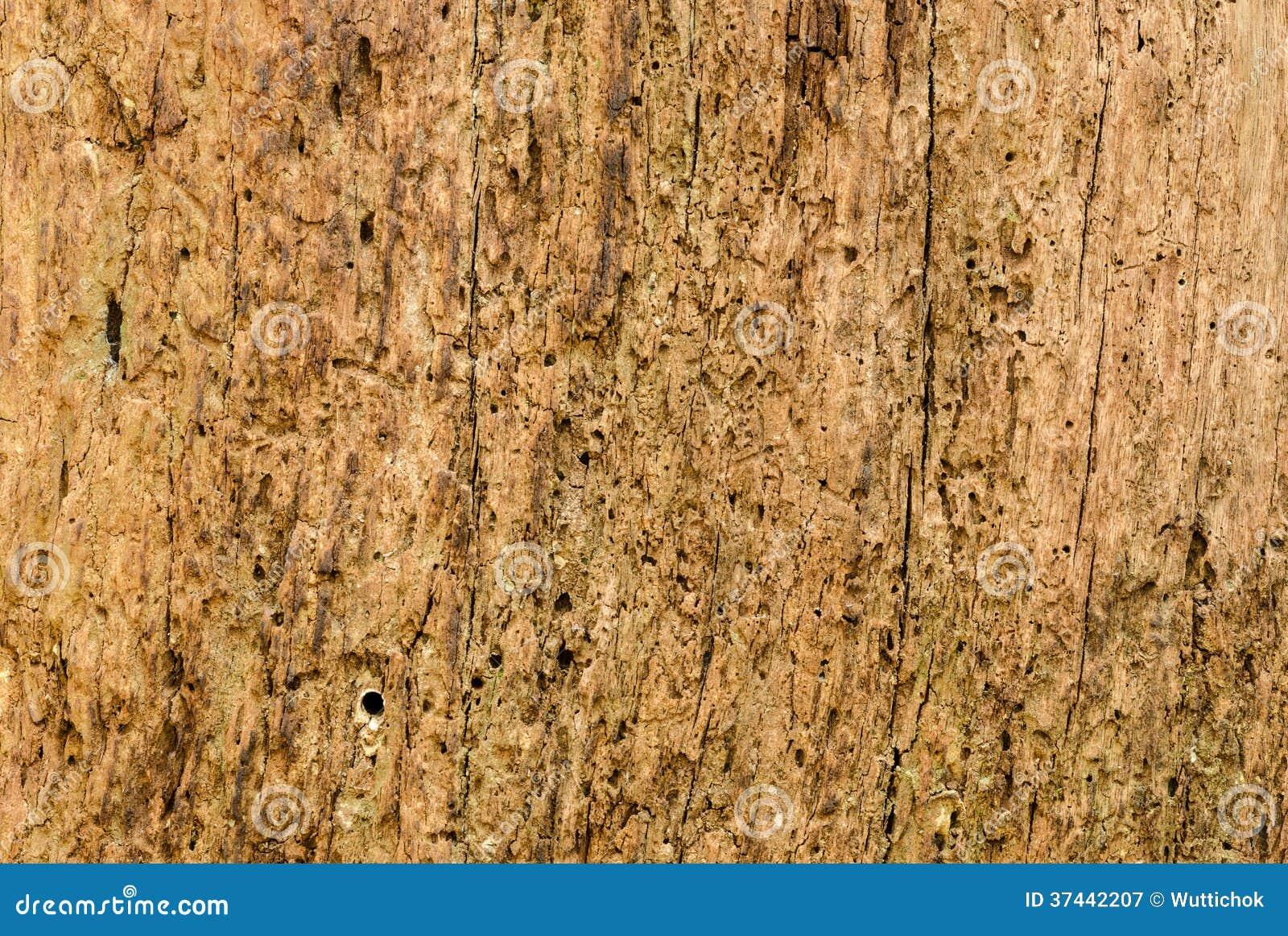 Zijaanzicht van oude houten textuur