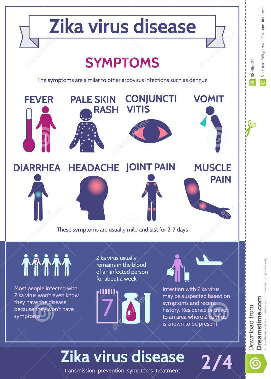 zika virus infographic with icons and text information about symptoms of illness health care
