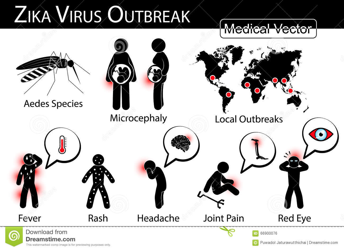 Zika Virus Outbreaks Infographics Stock Vector
