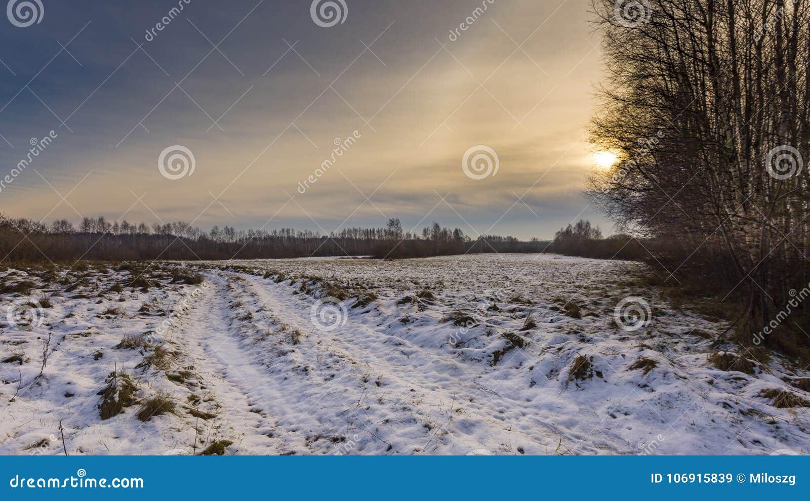 Zim łąki z śniegiem