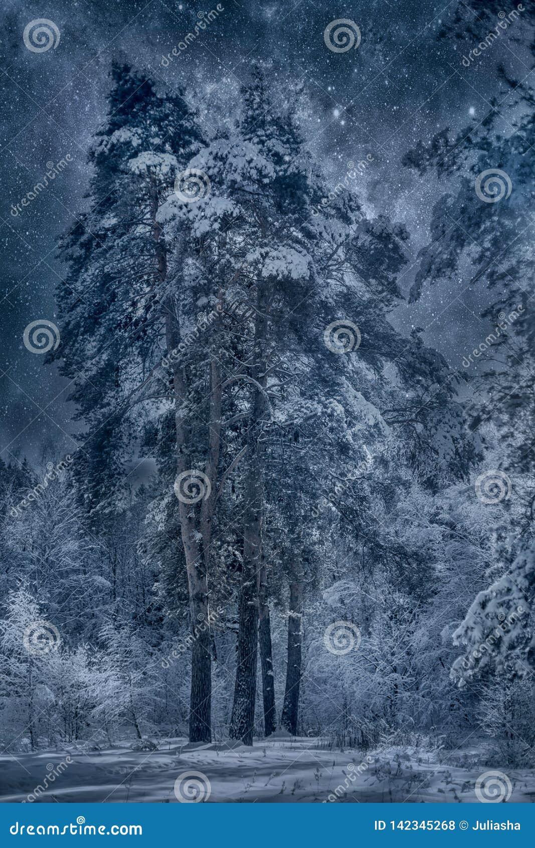 Zima śnieżny krajobraz przy słonecznym dniem