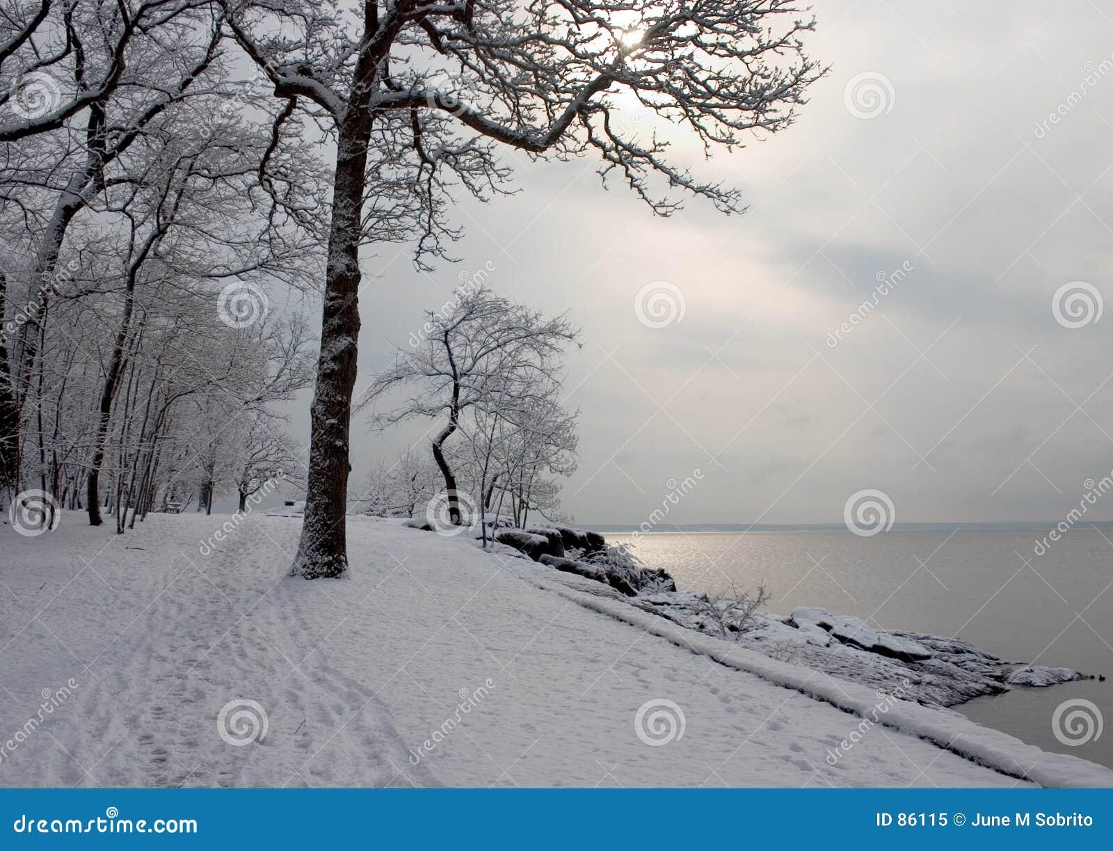 Zima ścieżki