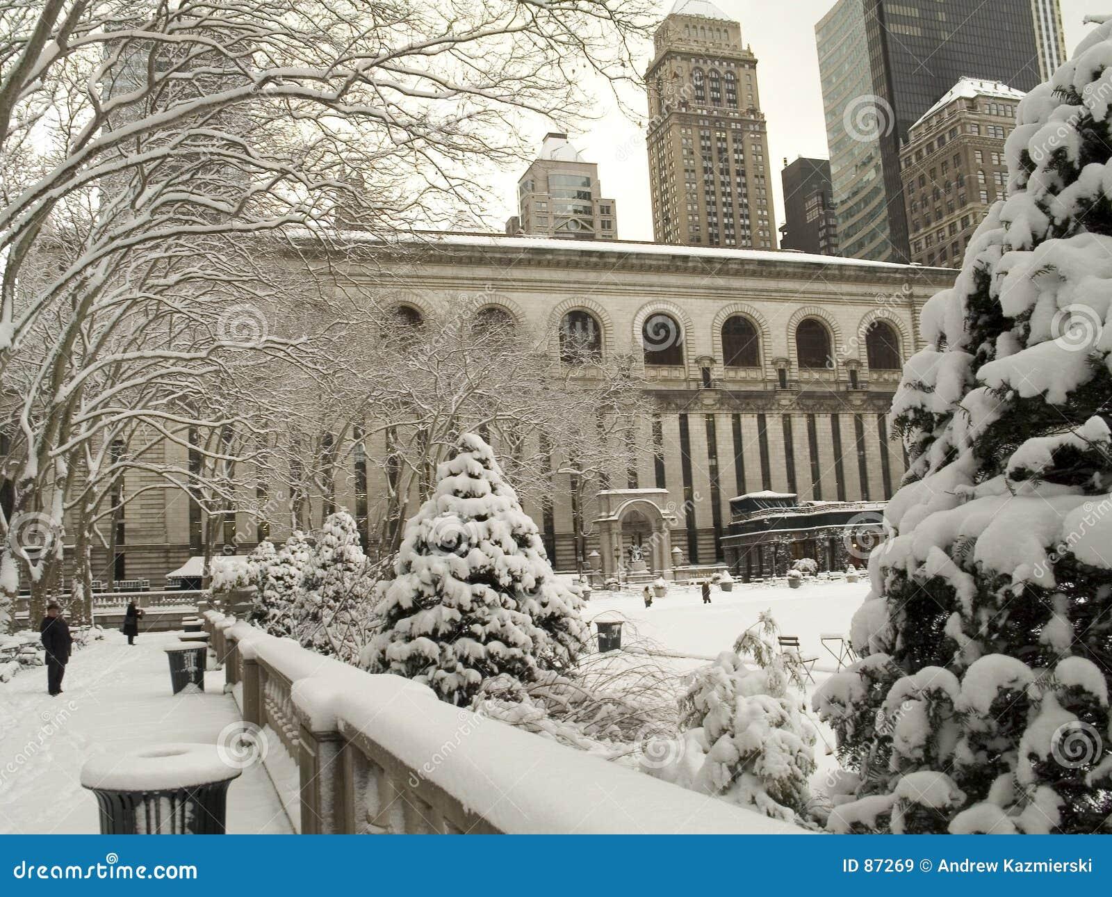 Zima bryant park