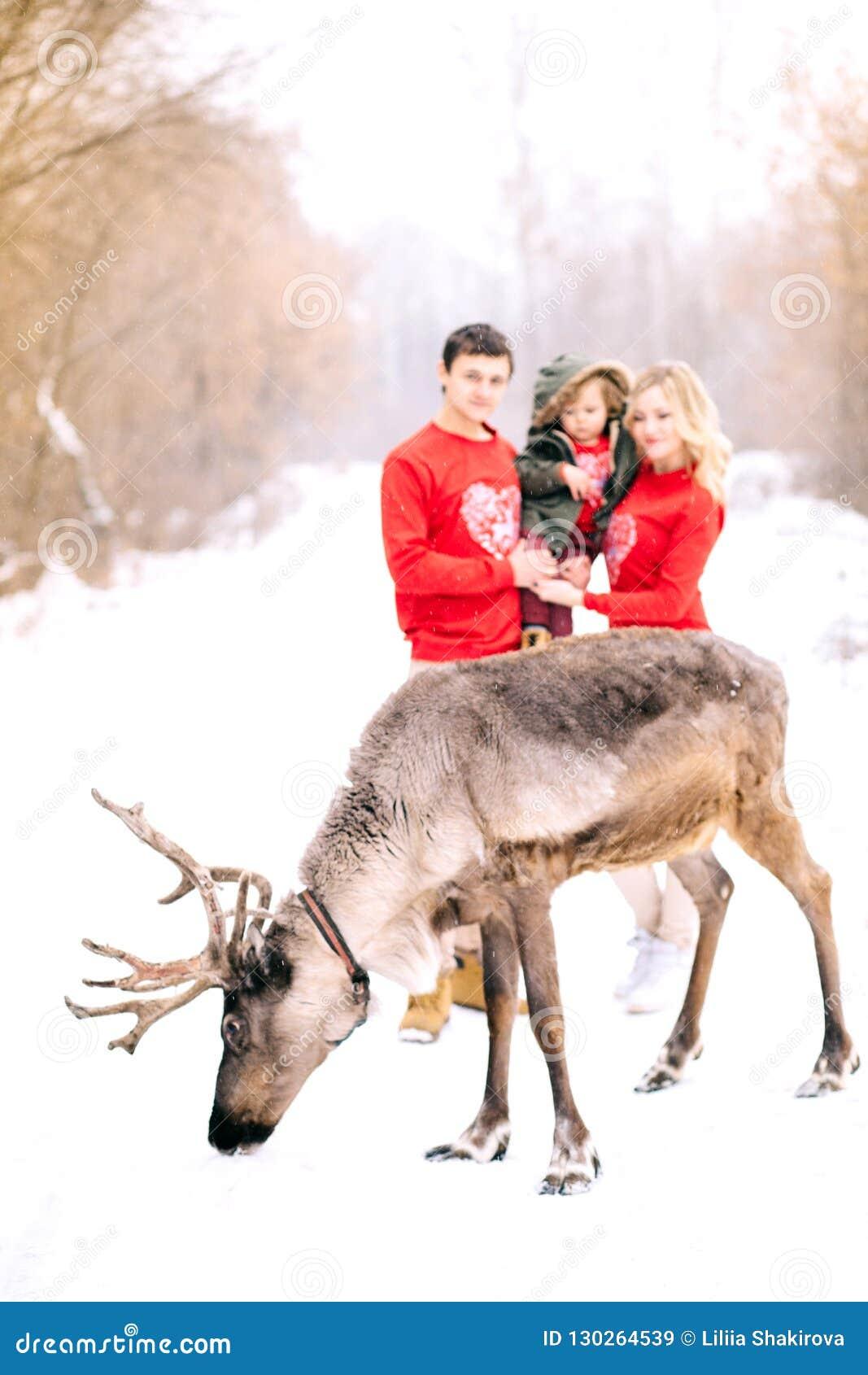 Zima, defocused Szczęśliwa rodzina, piękni jeleni spacery i bawić się z śniegiem w zimie