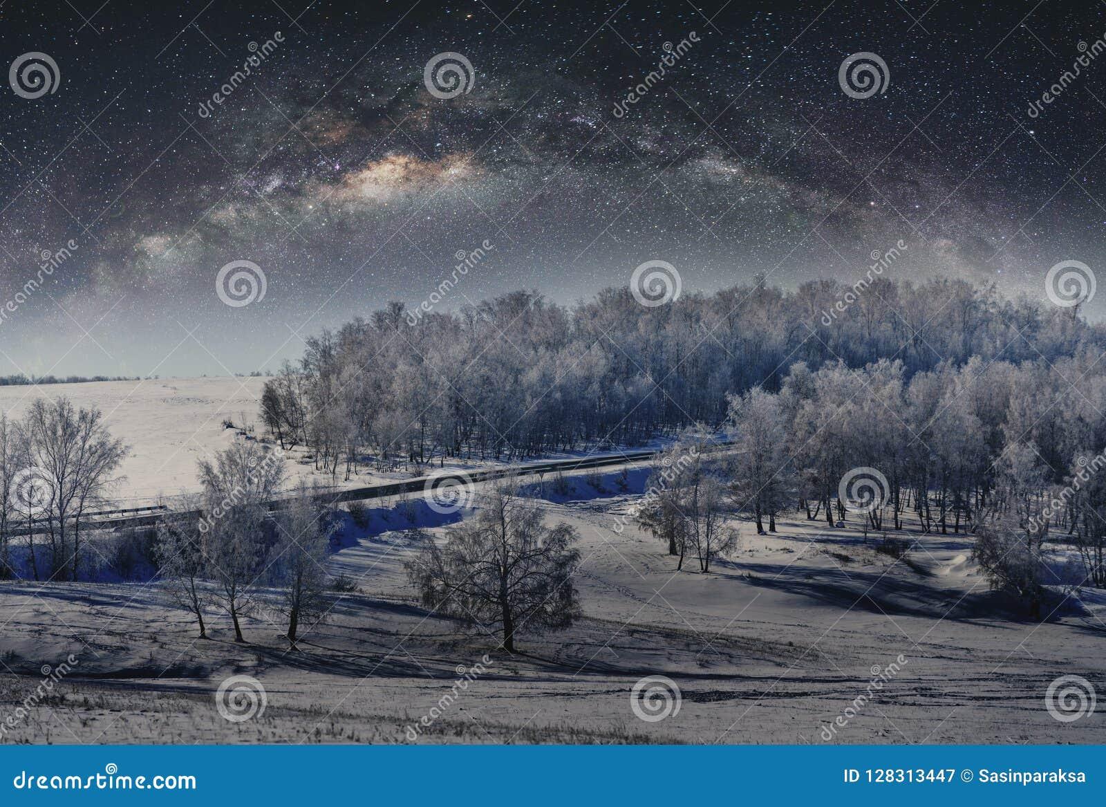 Zima krajobraz, las zakrywający śniegiem z niebem gwiazdy pełno