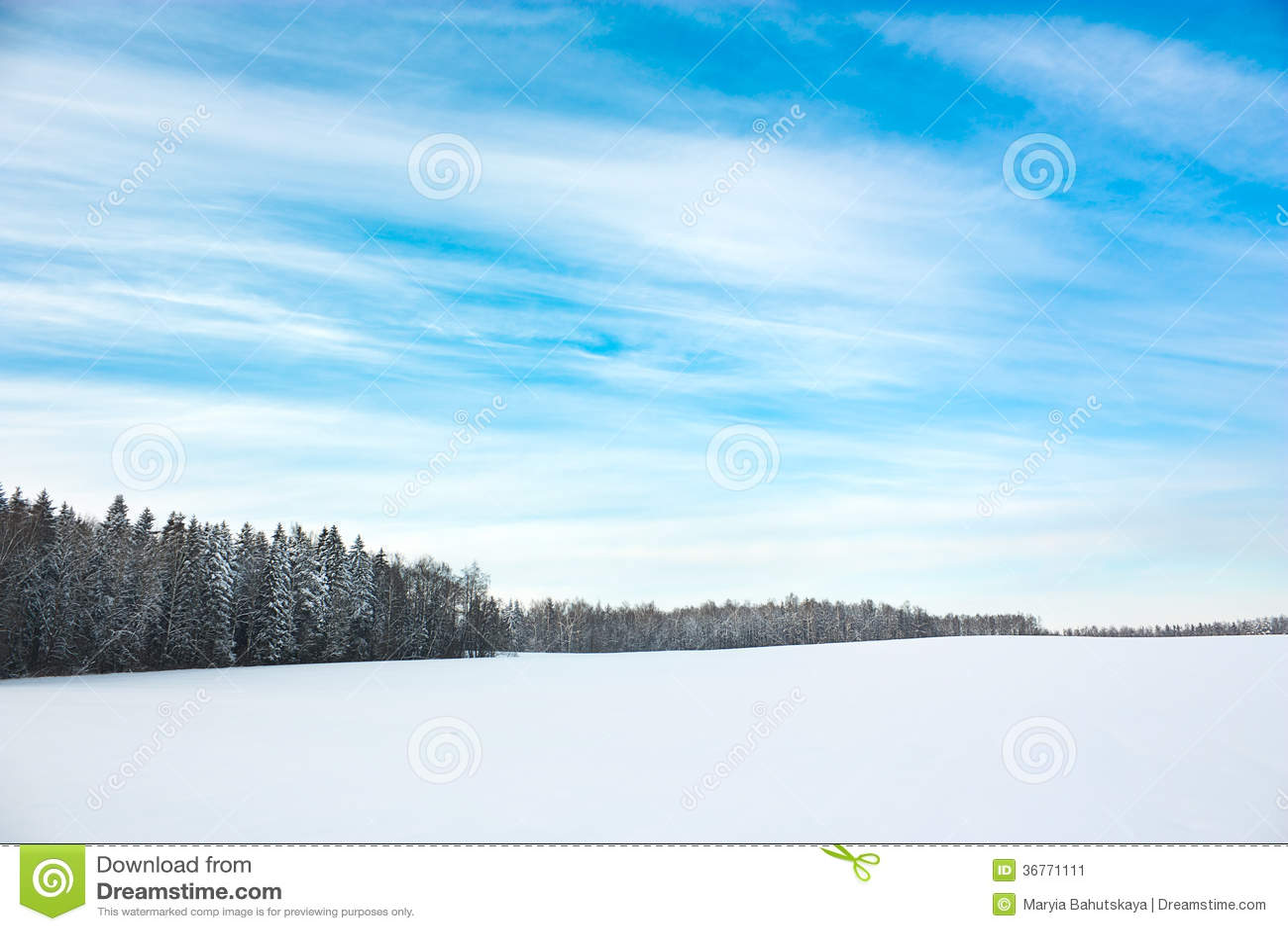Zima krajobraz z Śnieżnym polem i niebieskim niebem