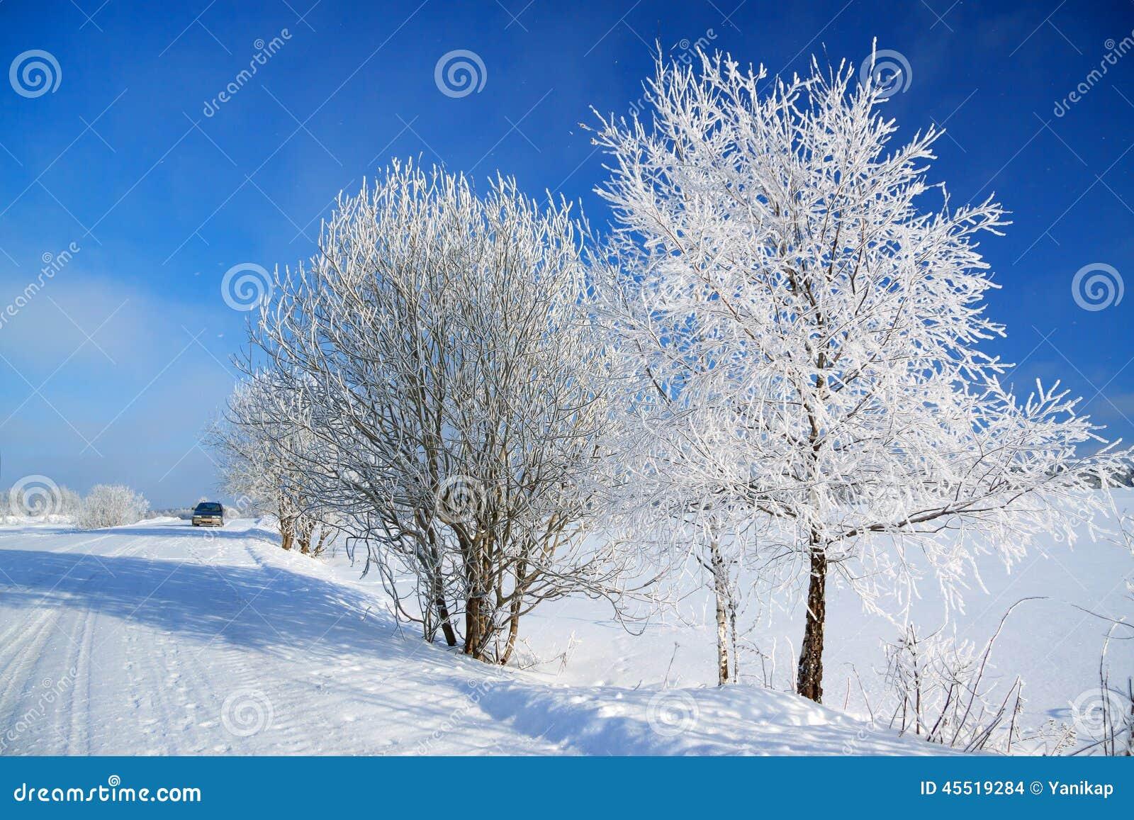 Zima krajobraz z drogą las i niebieskie niebo