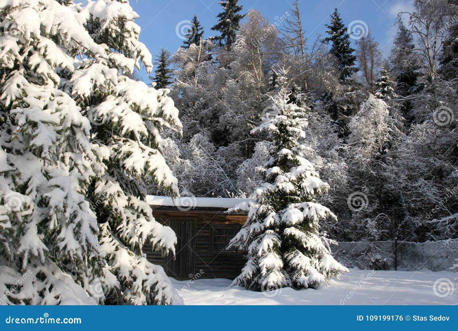 Zima kraju stajnia
