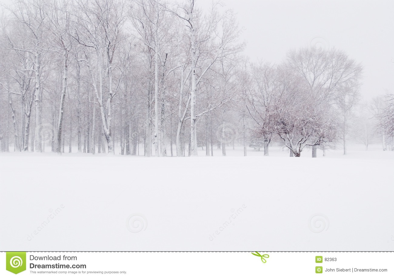Zima śniegu