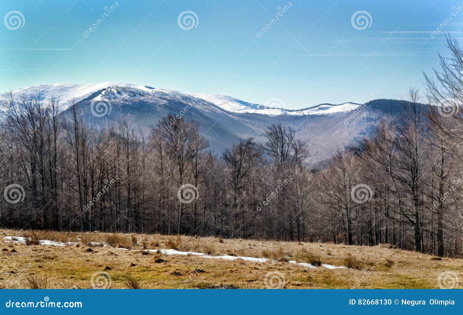 Zima w Ciucas górach, Rumunia