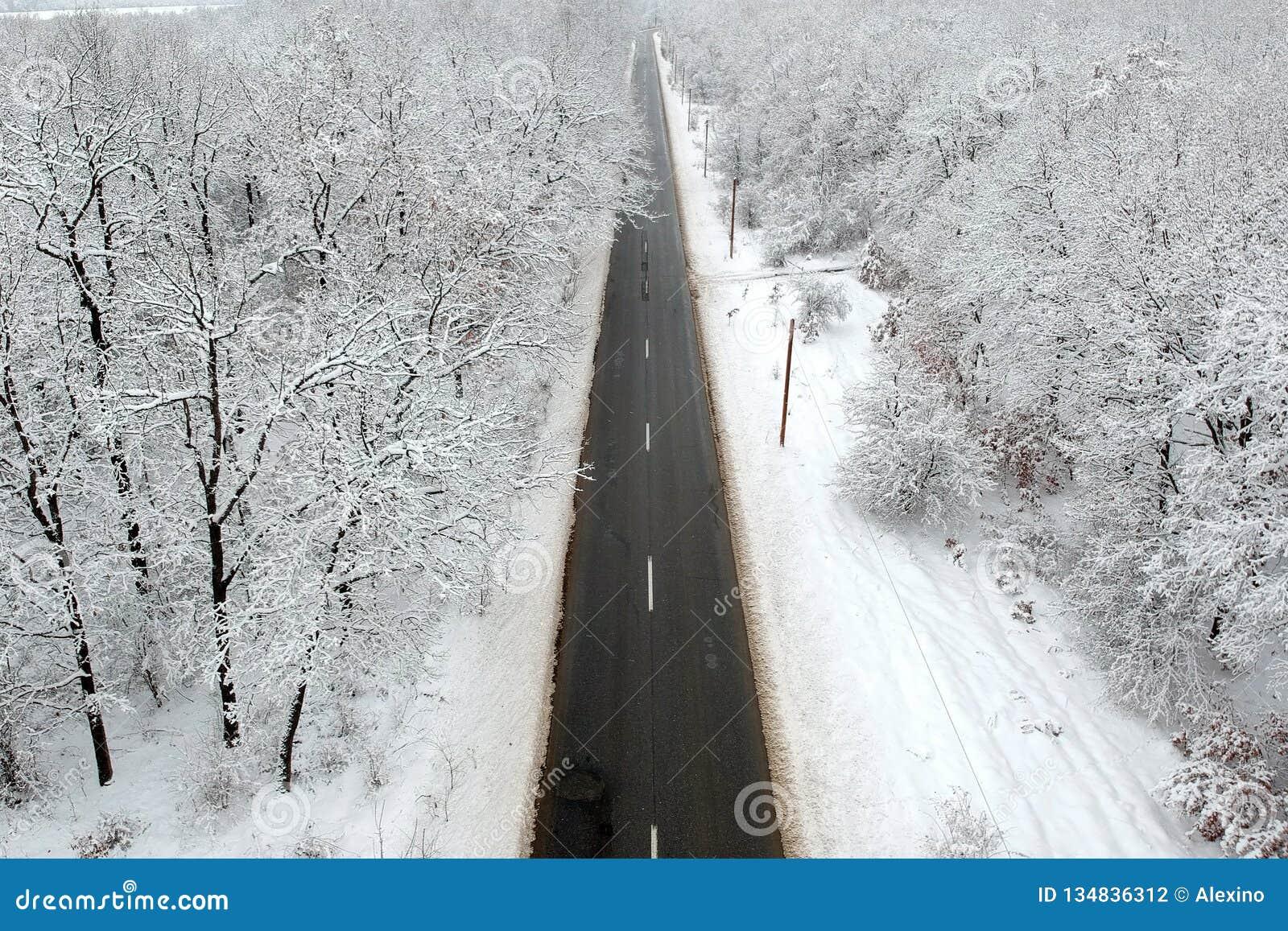 Zima widok droga po środku lasu