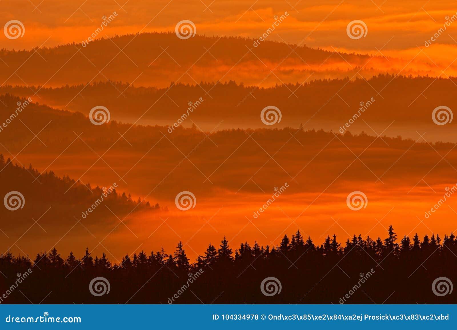 Zimny ranek w Sumava parku narodowym oszraniają, wzgórza i wioski w mgle i, mglisty widok na czeskim krajobrazie, błękitna zimy s