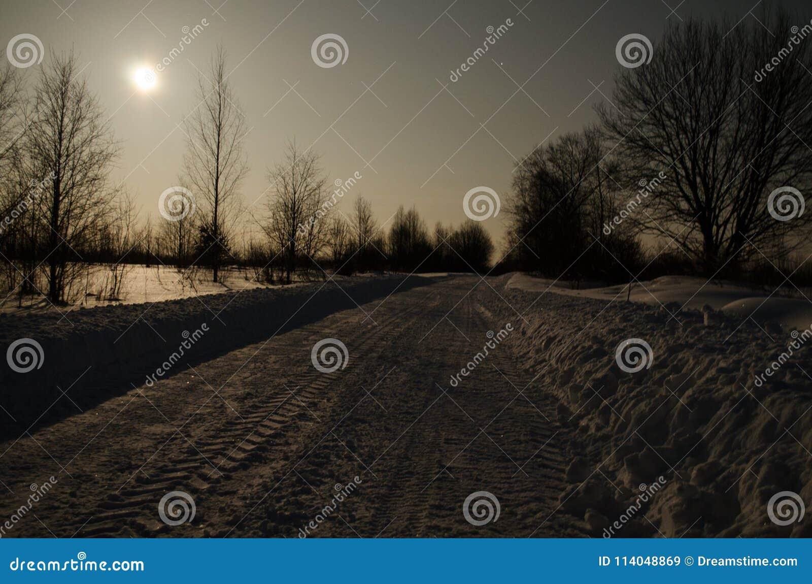 Zimy droga w blasku księżyca
