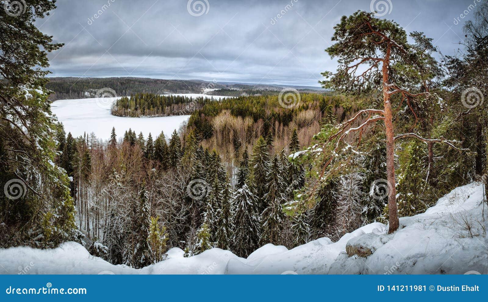 Zimy kraina cudów w Finlandia od punkt widzenia
