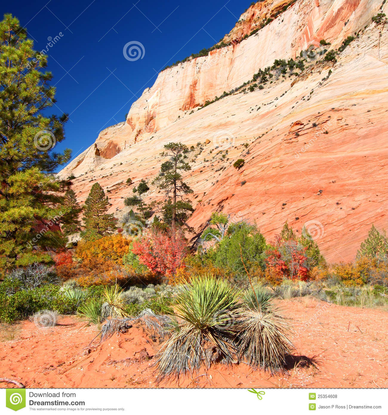 geology parks zion