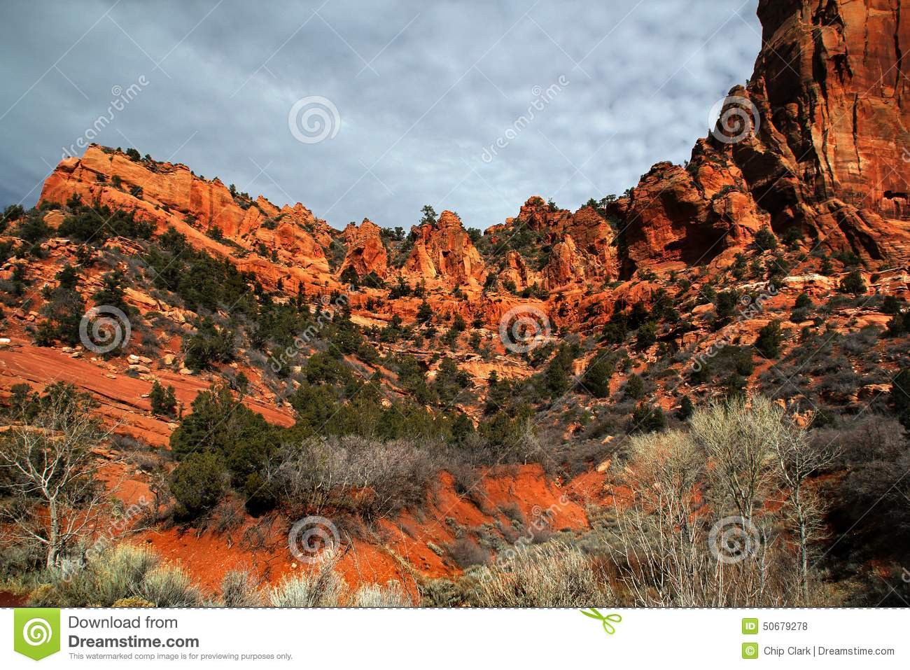 Zion National Park Royalty Free Stock Photography 57681635