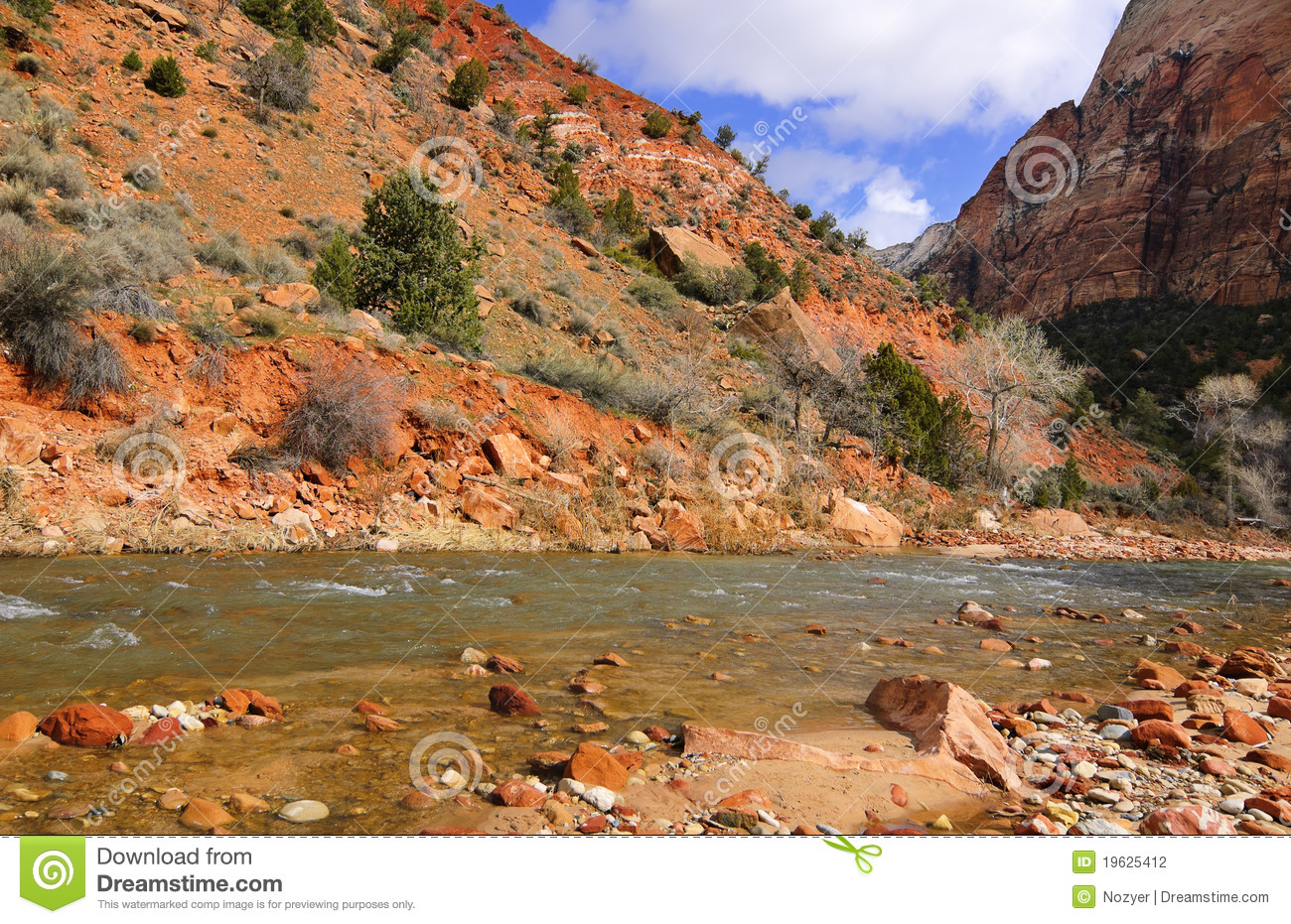 Stock photography zion national park and the virgin river in spring
