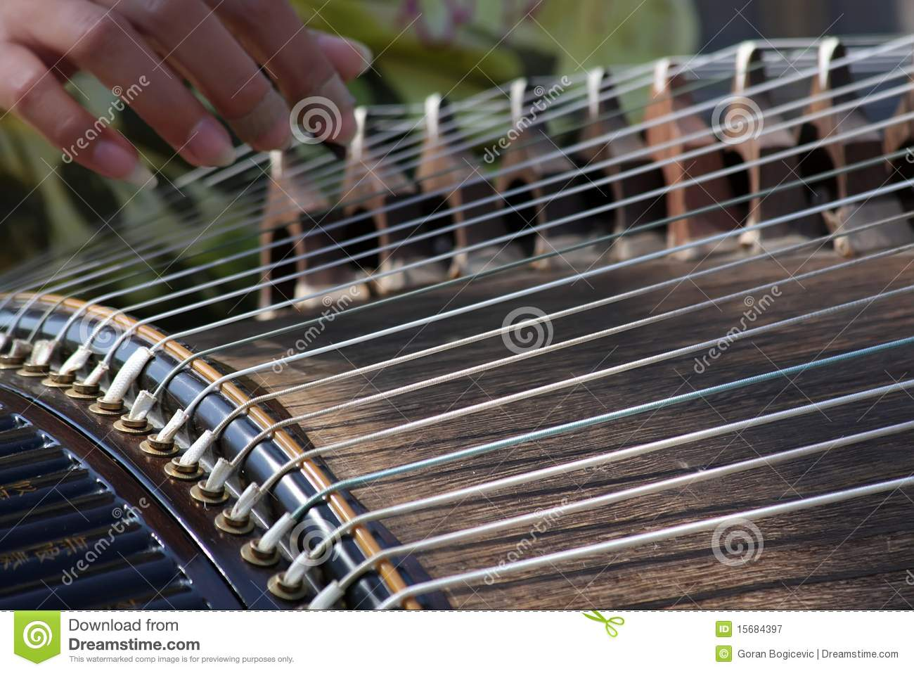 zither royalty free stock photography image 15684397