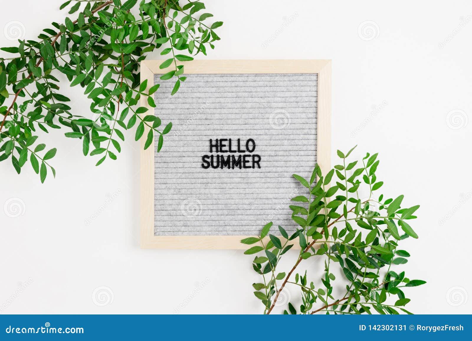 Zitieren Sie - hallo Sommer Grenzrahmen gemacht von den Pistazienniederlassungen