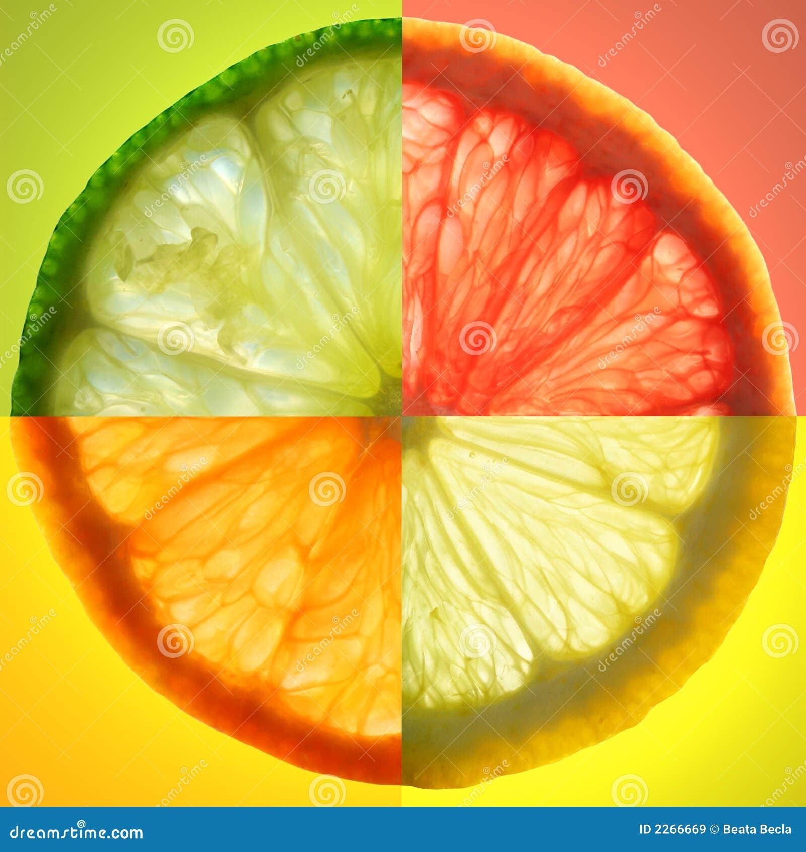 Zitrusfruchtscheibe