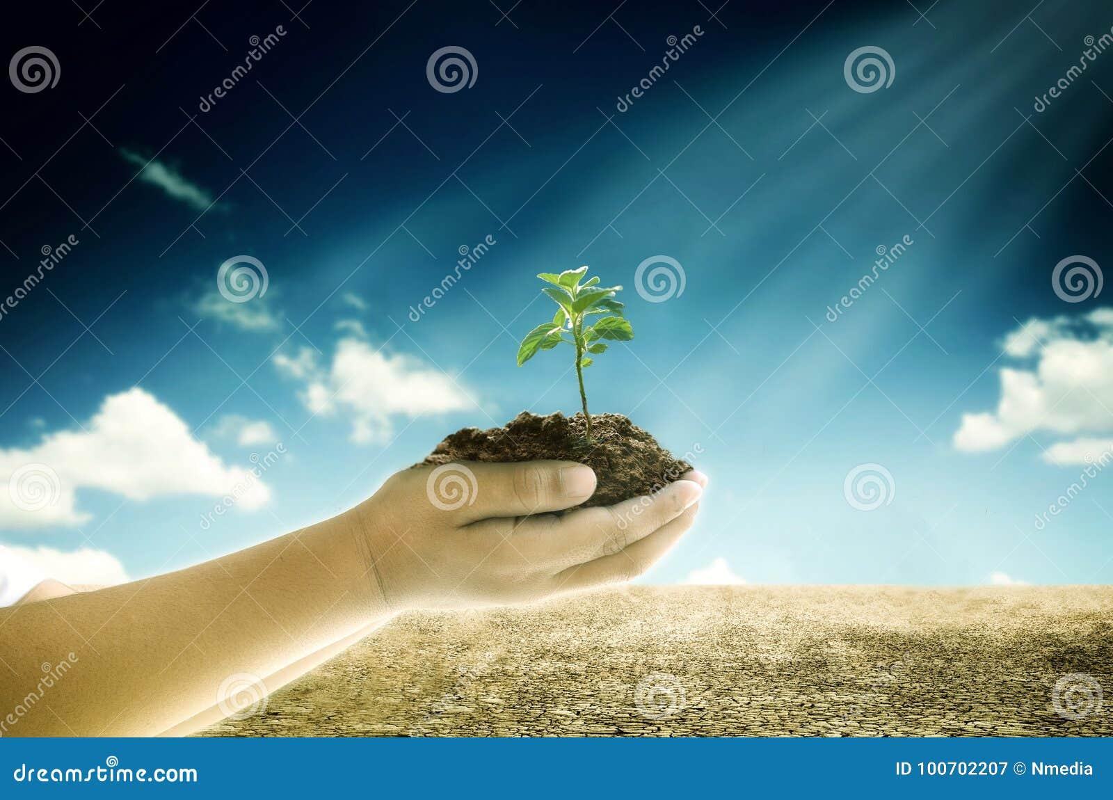 Zmiana Klimatu, globalny nagrzanie i Podtrzymywalny pojęcie,