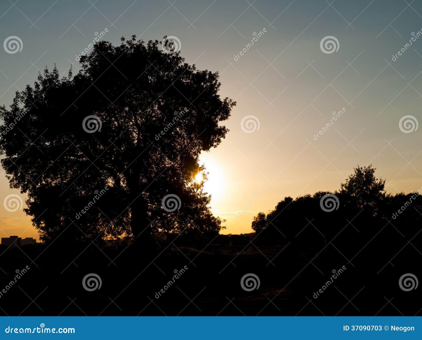 Download Zmierzch, Halle, Niemcy obraz stock. Obraz złożonej z światło - 37090703