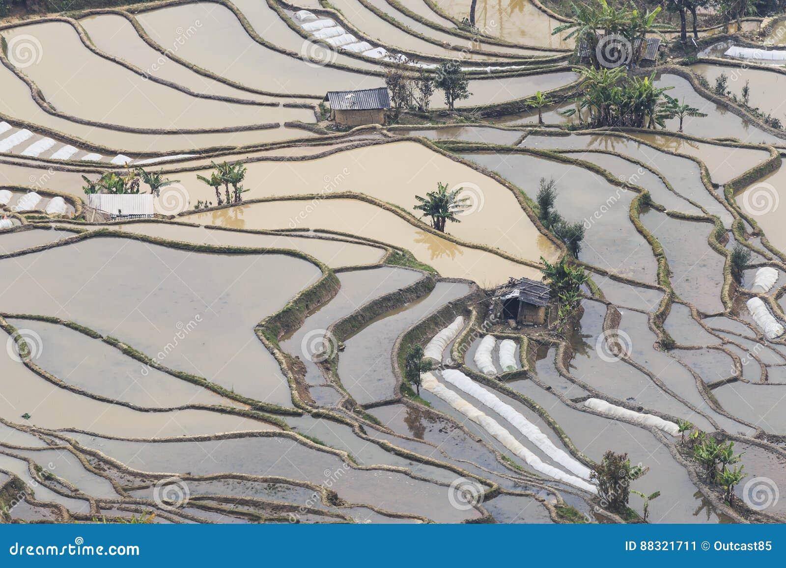 Zmierzch nad YuanYang ryż tarasuje w Yunnan, Chiny, jeden opóźneni UNESCO światowego dziedzictwa miejsca