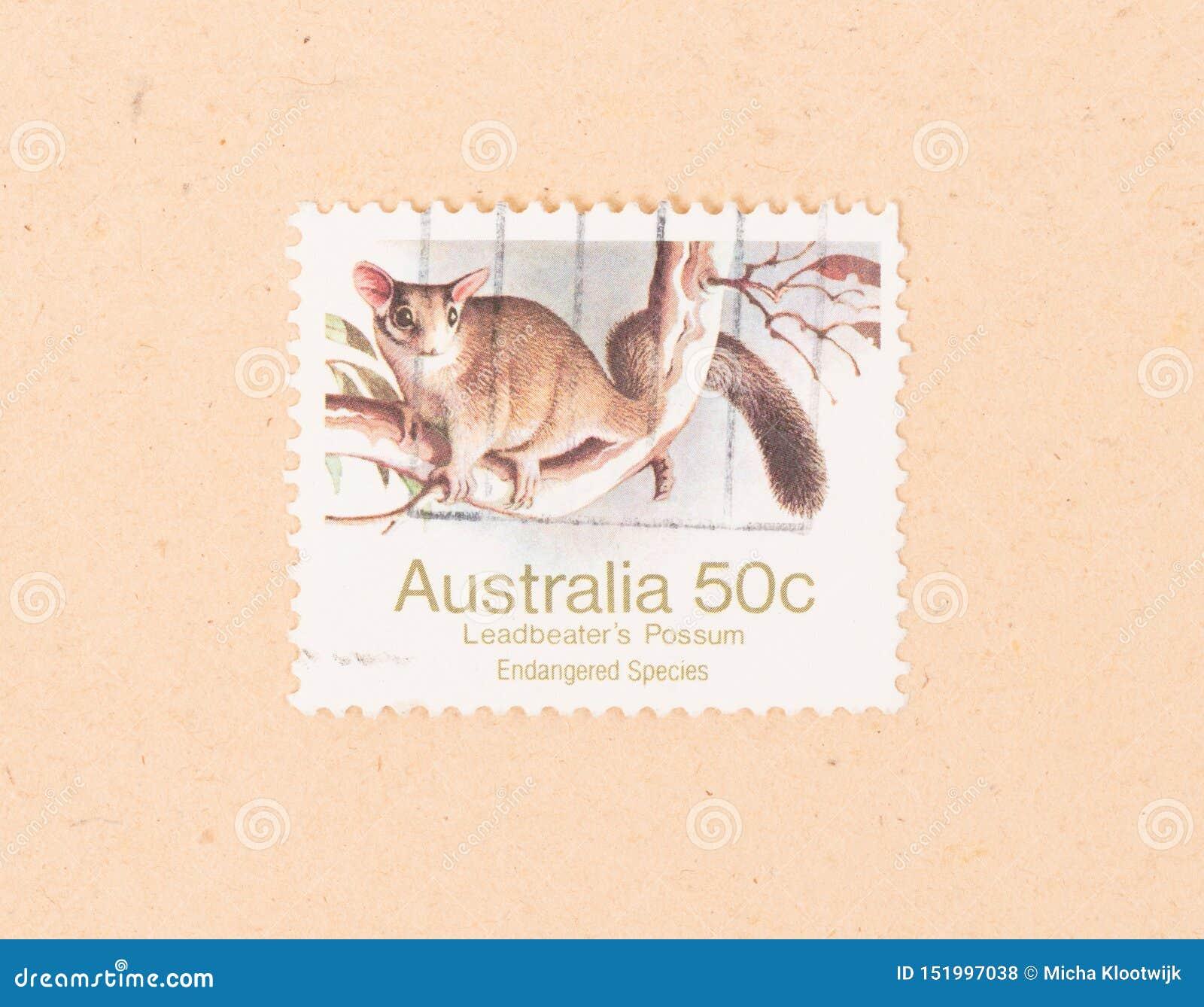 Znaczek drukujący w Australia pokazuje Leadbeater Possum około 1980,