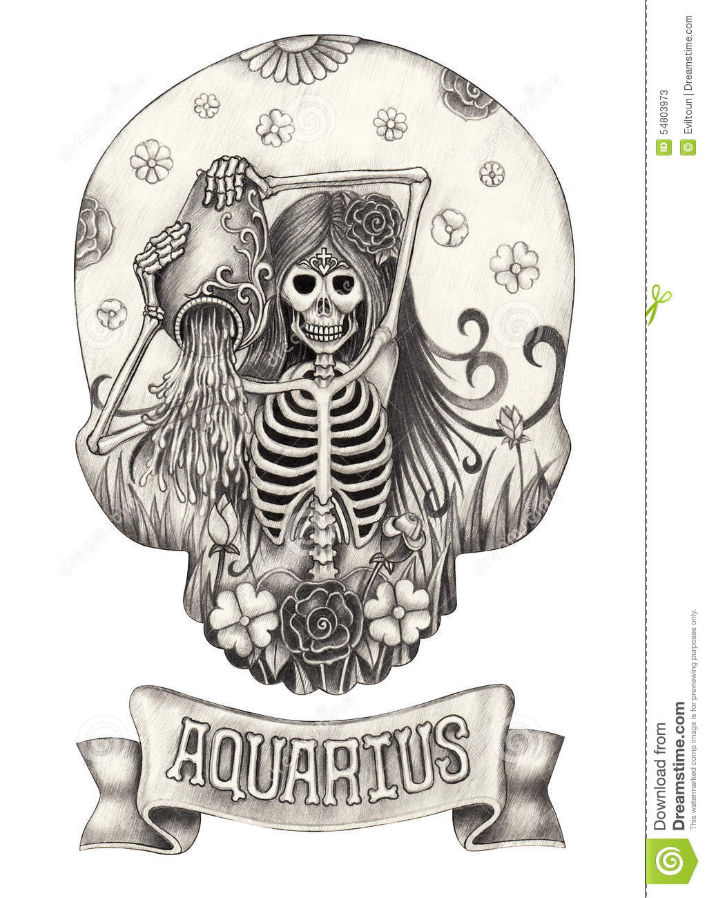 Zodiac Skull Aquarius Hand Drawing On Paper Stock