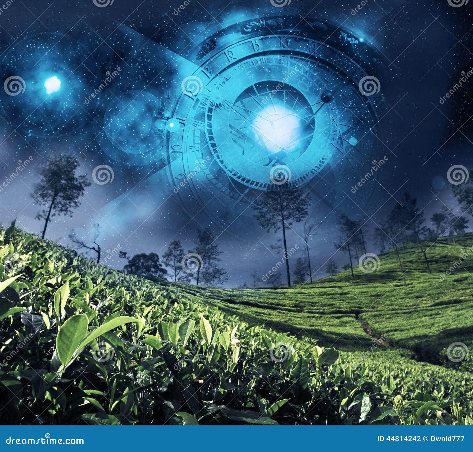 Zodiaque d astrologie sur le ciel nocturne