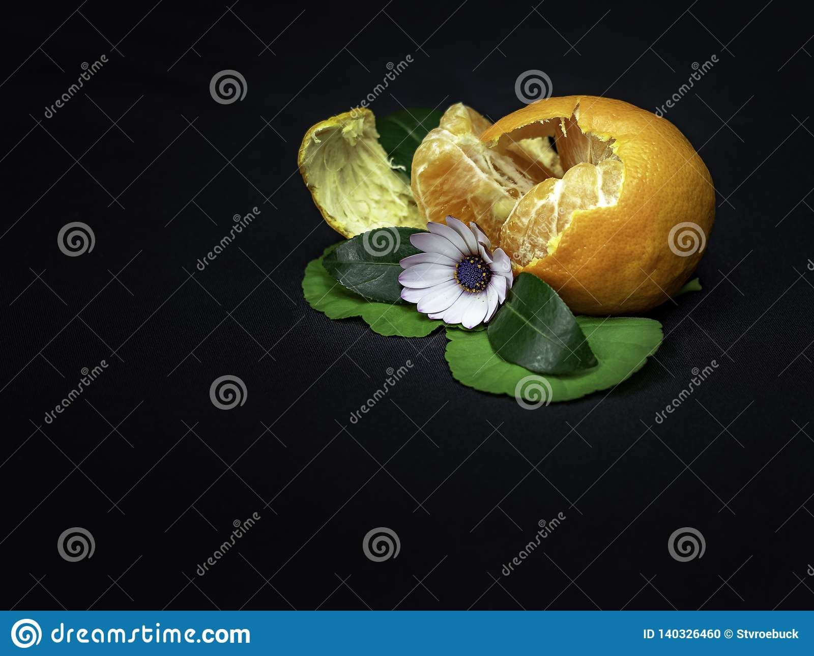 Zog teils Orange mit Gänseblümchendekoration mit Blättern auf einem schwarzen Hintergrund ab