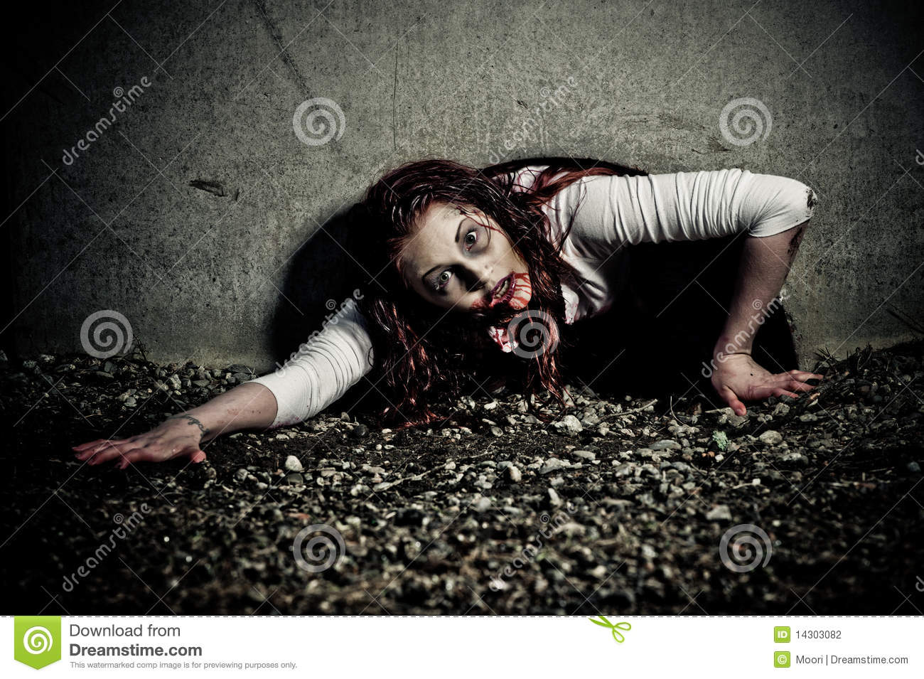 Zombie girl stock photography image 14303082 for Mirror zombie girl