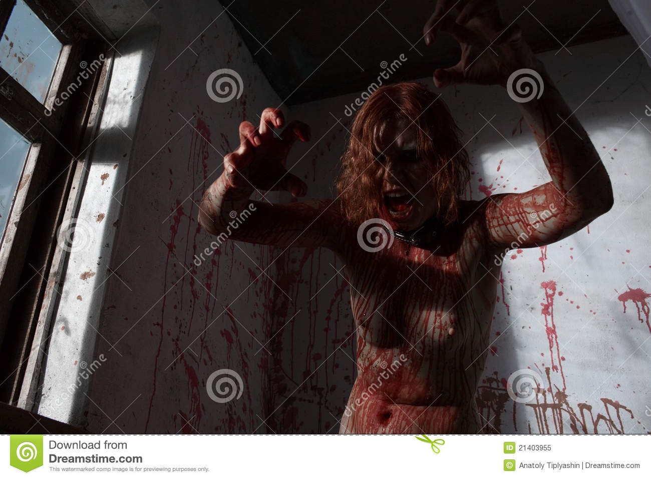 Zombie girl royalty free stock photo image 21403955 for Mirror zombie girl