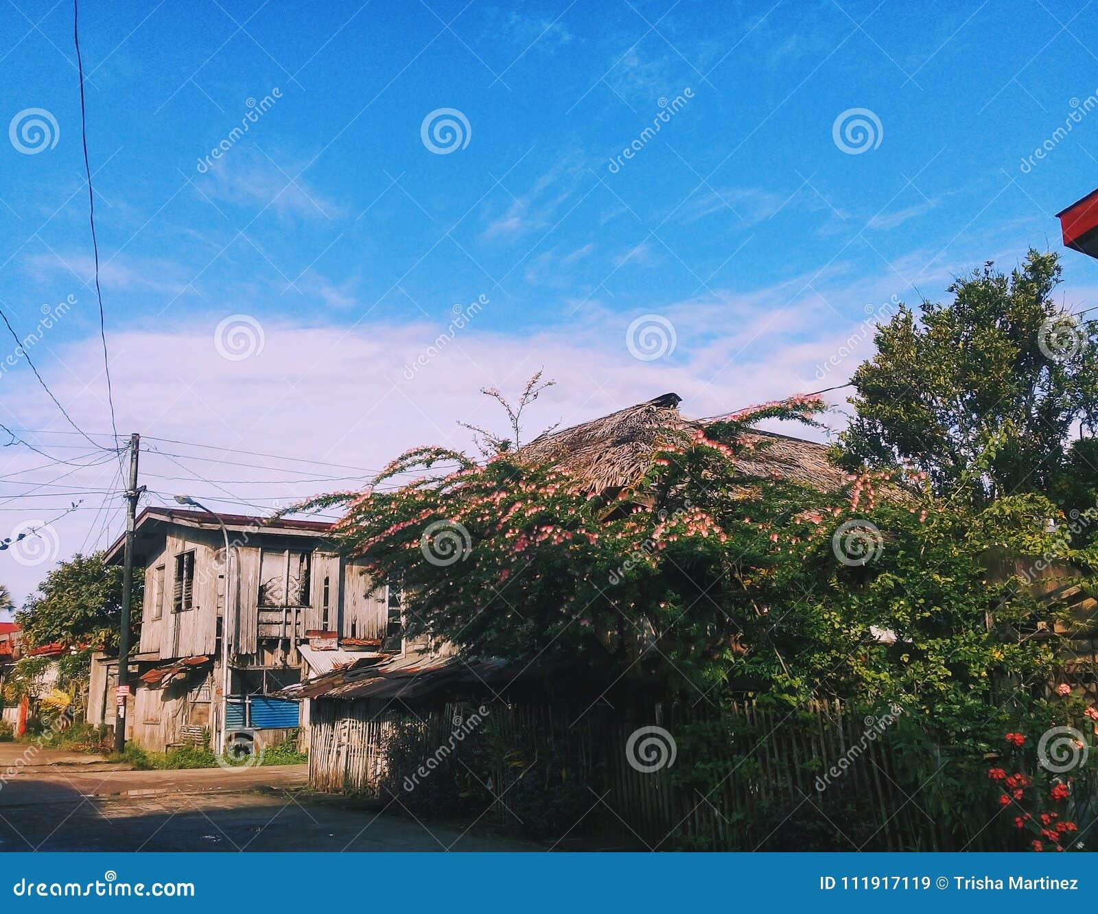 Zon-gekuste huizen