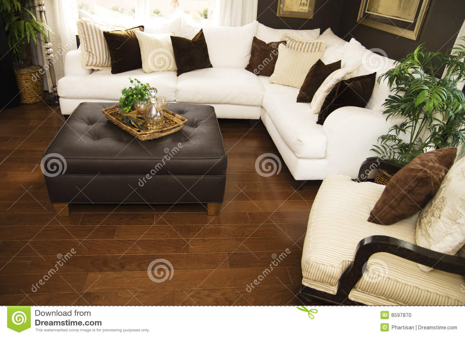 Zona che pavimenta il legno duro del salone
