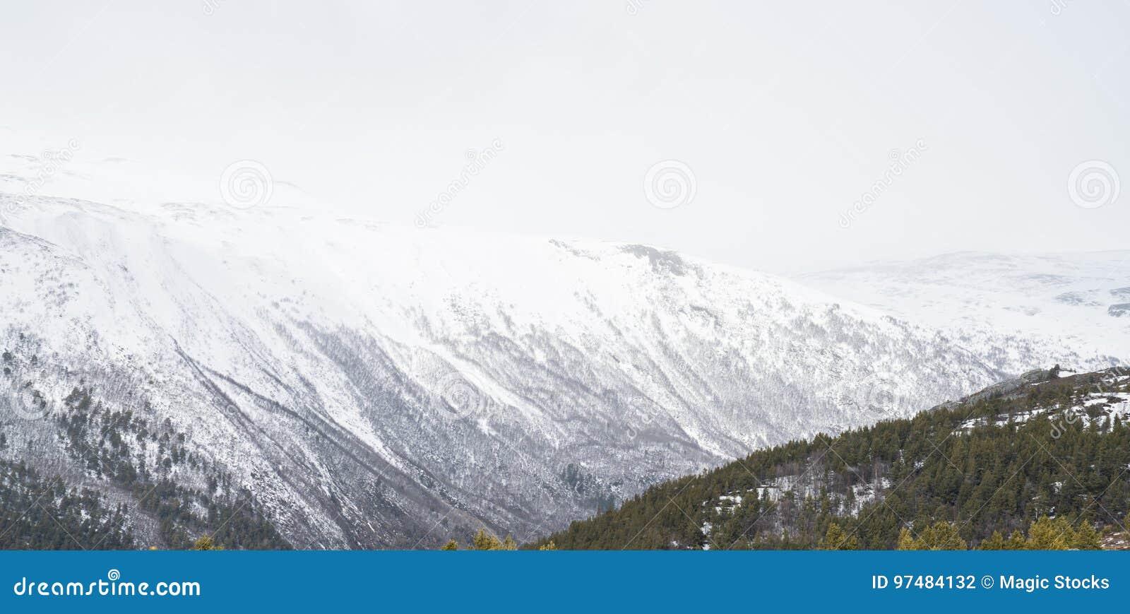 Zona di montagna vicino a Galdhøpiggen