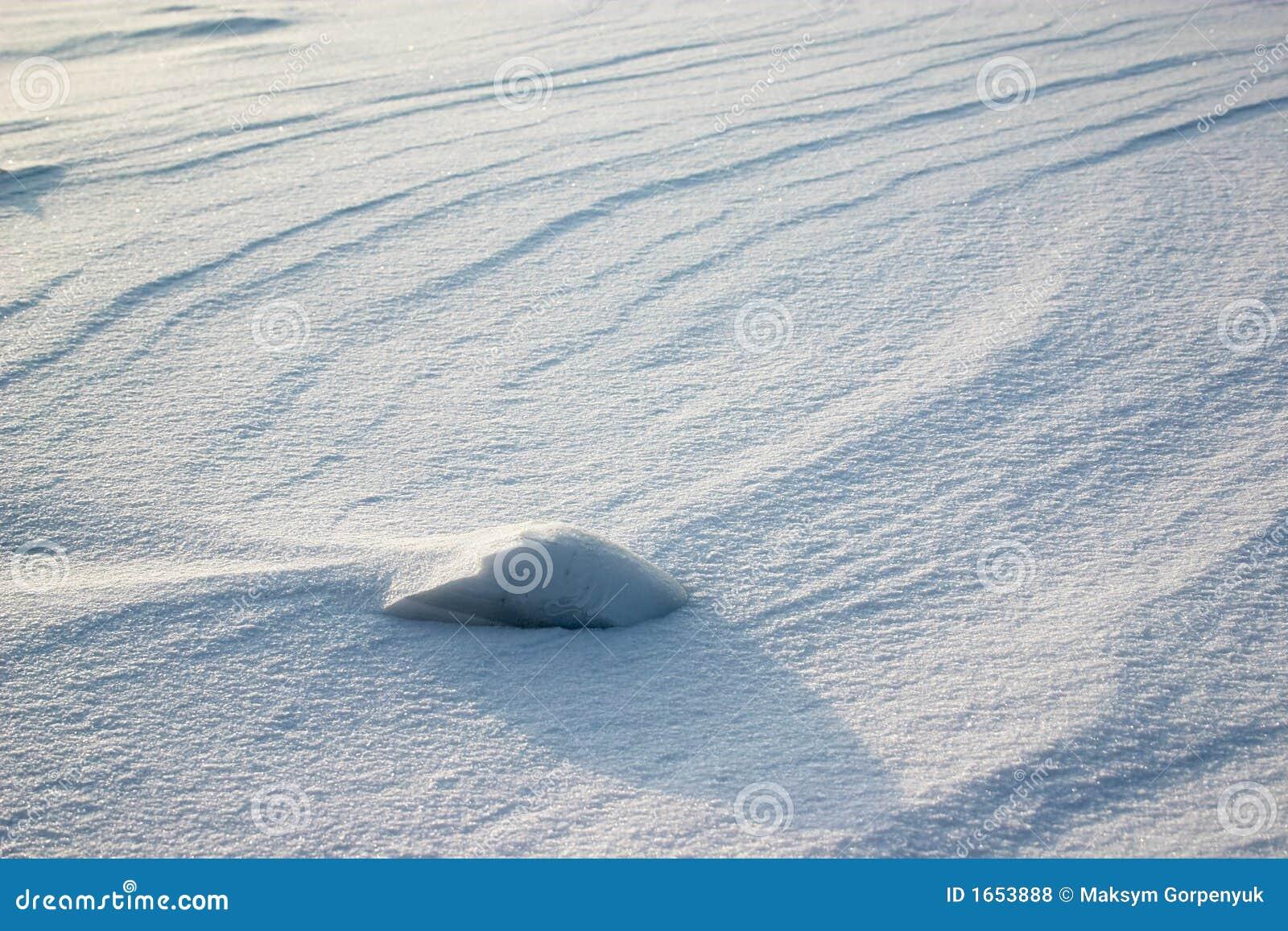 Zone de neige