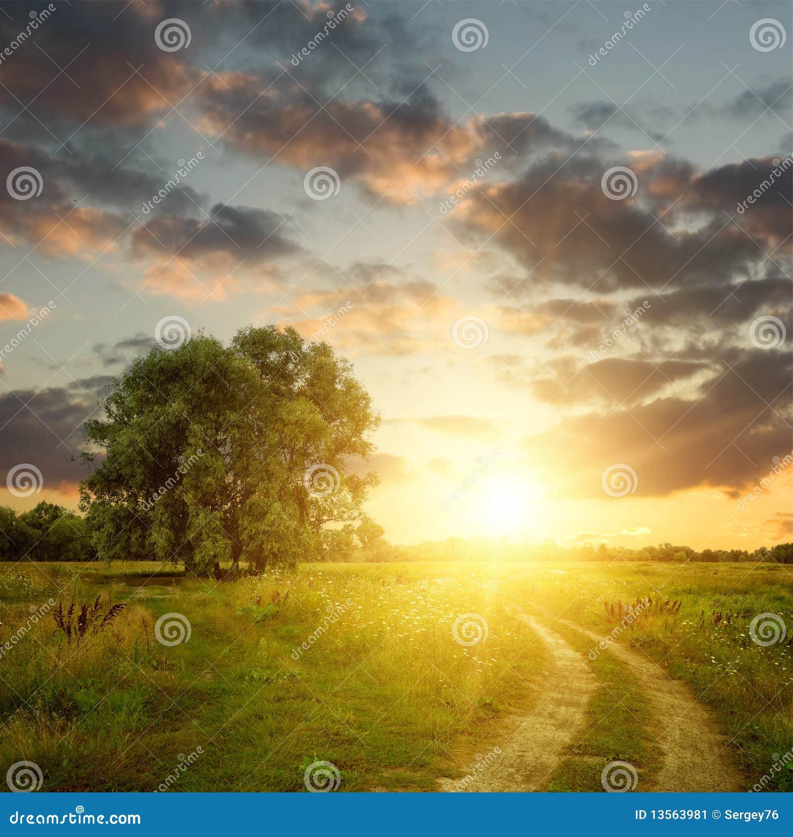 Zone et chemin de terre au coucher du soleil