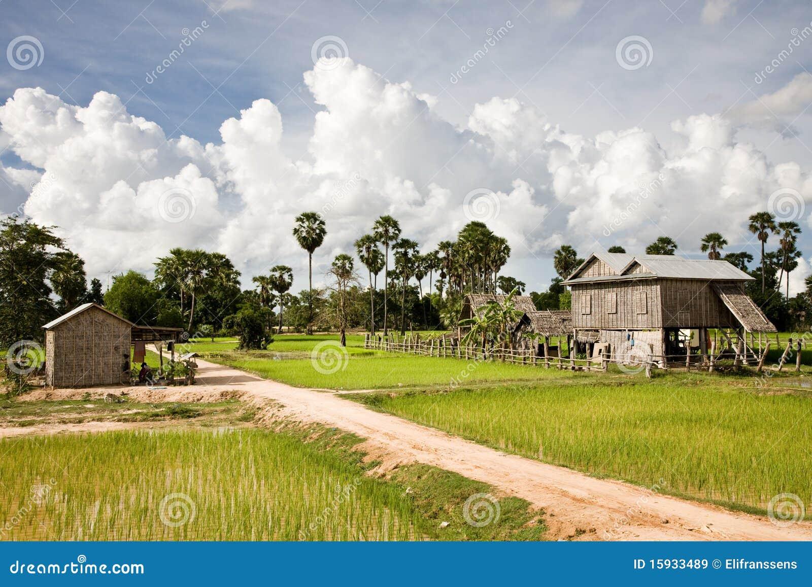Zone rurale, Battambang, Cambodge