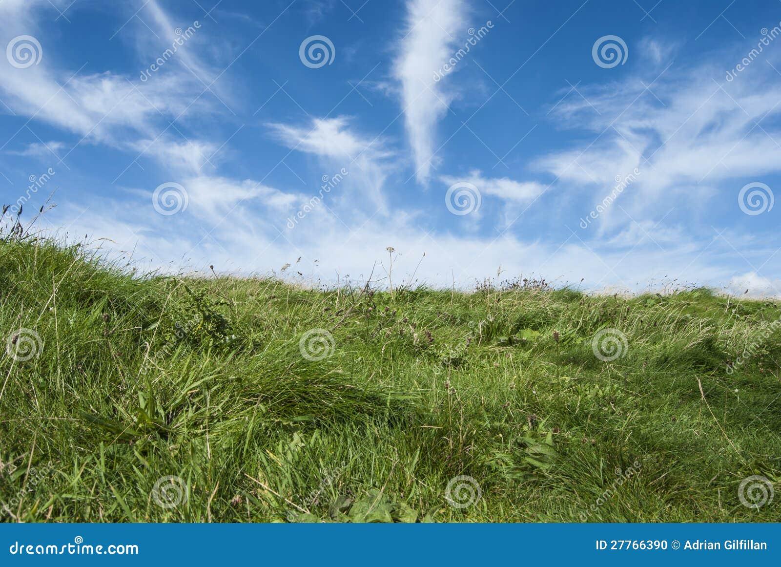 Zones de vert