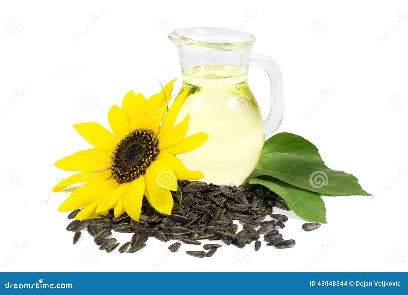 Zonnebloem en Zaden met Groene die Bladeren en Zonnebloemolie in Glaswaterkruik op Wit wordt geïsoleerd