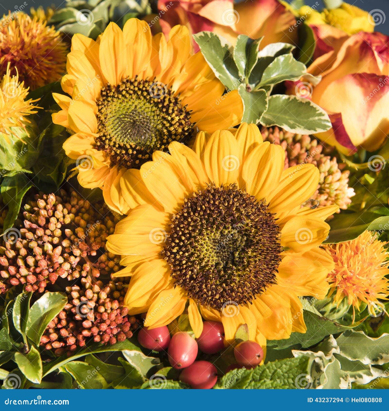 Zonnebloemen en dalingsbloemen