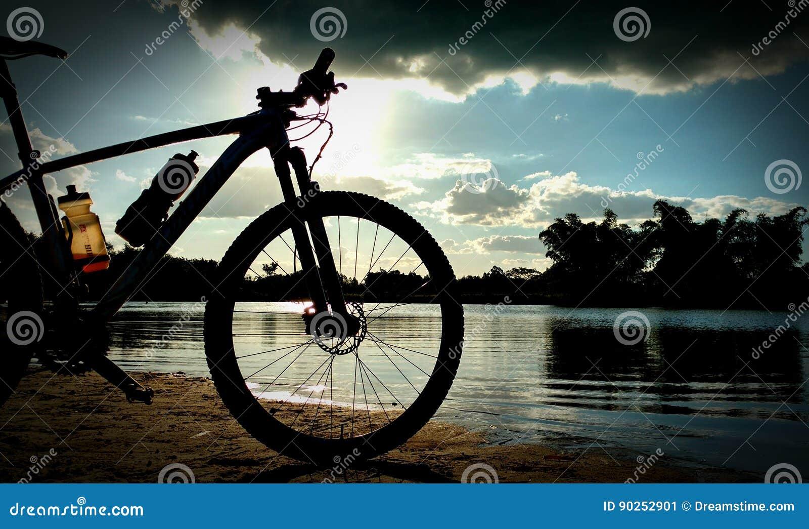 Zonneschijn en fiets